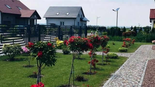 Legnickie Pole 6